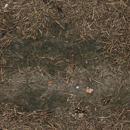 Seamless forest dirty ground texture