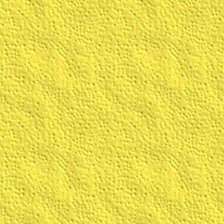 レモンの肌の質感