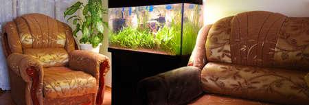 植物と家具と水族館かもし出して 写真素材