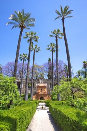 alcazar: Alcazar, Seville