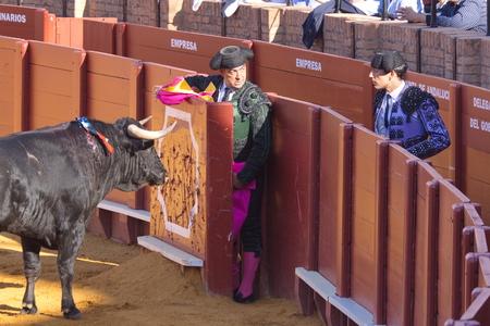 """corrida de toros: Sevilla - 16 de mayo: torero español está llevando a cabo una corrida de toros en la plaza de toros el 16 de mayo de 2010 en Sevilla, España. """"Corrida"""" taurino de los toros es la tradición española."""