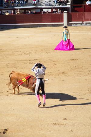 spanish bull: Bullfighting in Madrid Stock Photo