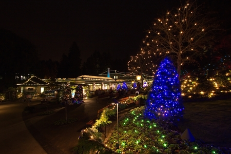 Christmas Eve in  Butchart Gardens