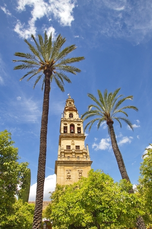 View of Cathedral of Cordoba Bell tower from Court of Oranges, Cordoba, Spain Stock Photo