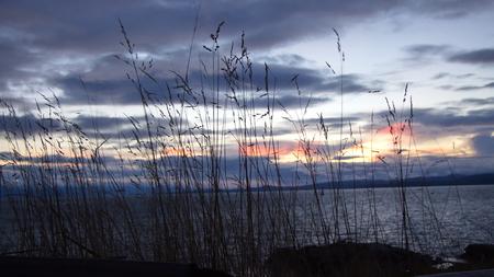 victoria bc: Sunset in James Bay, Victoria, BC, Canada