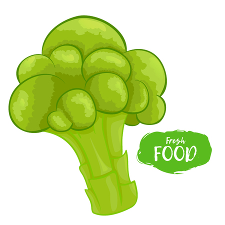 Illustration of broccoli on a white background