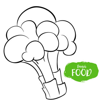 Vector illustration of broccoli. Sketch, outline. Coloring on the topic of vegetables. Fresh food Stock Illustratie