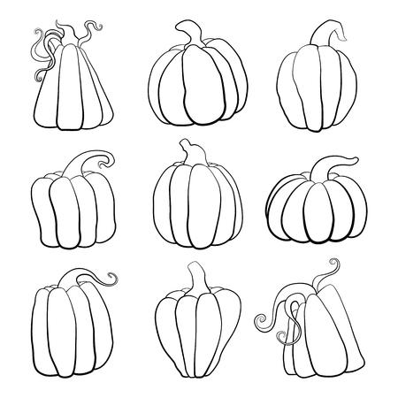 Illustration of a set of pumpkins of different shapes.