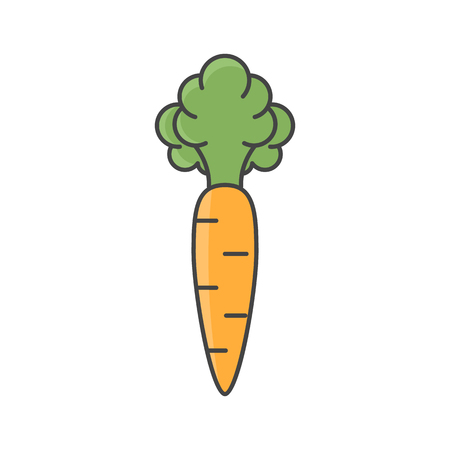 Vector illustration of orange carrot. Flat, color. Vivid picture of a vegetable. Stock Illustratie