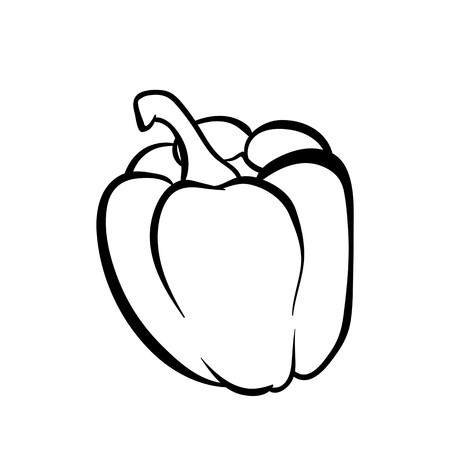 Vector hand drawn illustration of a peper. Outline doodle icon. Food sketch for print, web, mobile and infographics. Isolated on white background element.