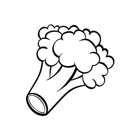 Vector hand drawn illustration of a broccoli.  Outline doodle icon. Food sketch for print, web, mobile and infographics. Isolated on white background element.