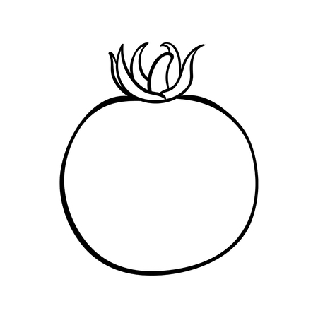Vector hand drawn illustration of a tomato. Outline doodle icon. Food sketch for print, web, mobile and infographics. Isolated on white background element. Stock Illustratie