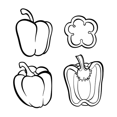Vector hand drawn illustration of peper. Outline doodle icon. Food sketch for print, web, mobile and infographics. Isolated on white background element. Set