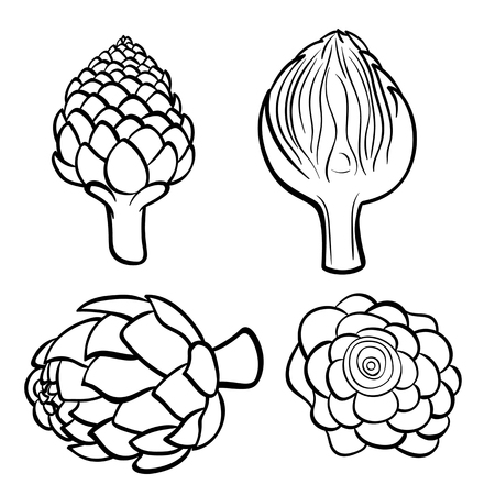 Vector hand drawn illustration of artichoke. Outline doodle icon. Food sketch for print, web, mobile and infographics. Isolated on white background element. Set Stock Illustratie