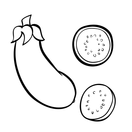 Vector hand drawn illustration of eggplant. Outline doodle icon. Food sketch for print, web, mobile and infographics. Isolated on white background element. Set