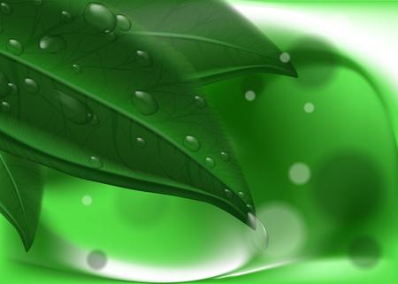 Hinterlässt Hintergrund. Hochauflösender Vektor Vektorgrafik