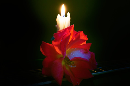 Composition of candles and roses on a dark background.