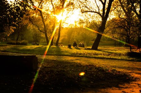 Sunset in the park in autumn with people in the meadow and beautiful rays of the sun through the trees