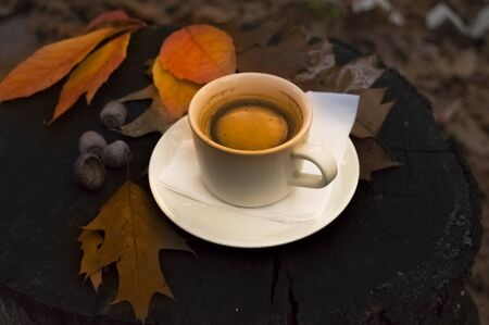 Hot coffee in a cup and fallen leaves on a stump in the forest in autumn