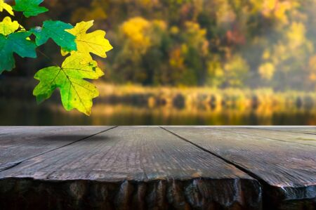 Old wooden table on a background of blurred autumn forest