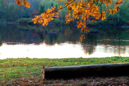 Autumn landscape with orange foliage on the lake in the park Imagens