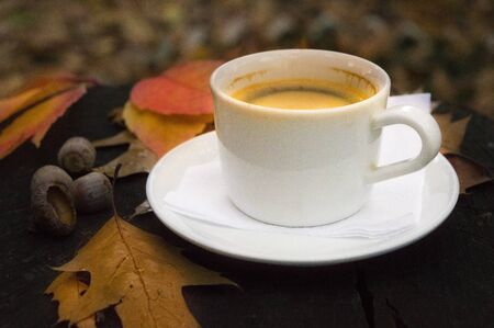 Autumn still life with a cup of coffee and fallen leaves Imagens
