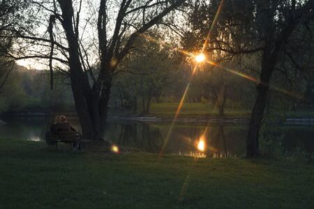 Autumn evening in the park at sunset day