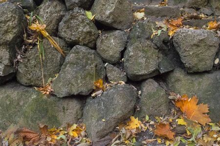 Background of an old stone wall with autumn foliage Imagens