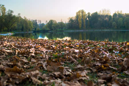 Wonderful view of the autumn lake in the park.