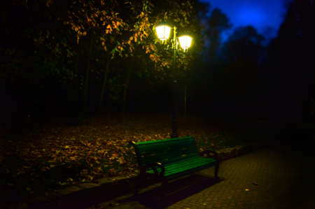 Romantic landscape in the evening in the park in late autumn with a lantern. Zdjęcie Seryjne - 150969717
