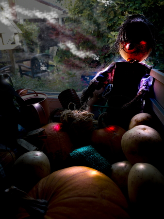 Creepy happenings in the garden shed on Halloween