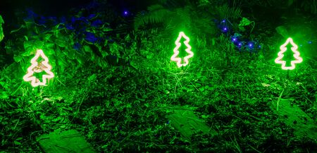 Green Christmas trees and blue festive outdoor lighting among plants in the garden
