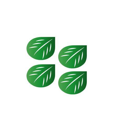 green leaf vector illustration on background Çizim