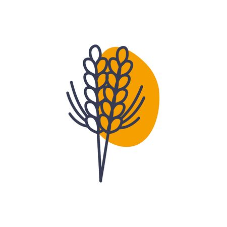 Wheat ear color line color style icon design, Food grain agriculture natural seed plant organic and corn theme Vector illustration Ilustrace