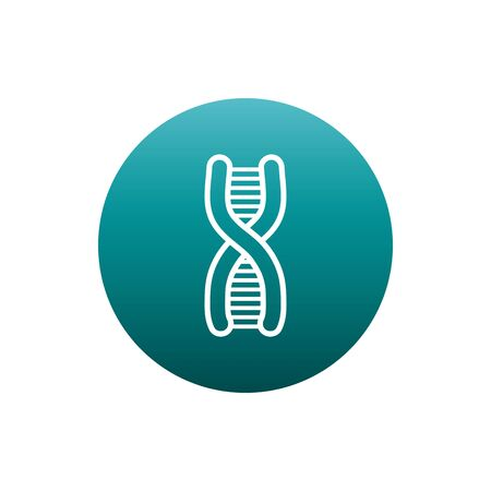 Dna structure block gradient style icon design, Chromosome science molecule genetic biology medical cell medicine and research theme Vector illustration Ilustrace