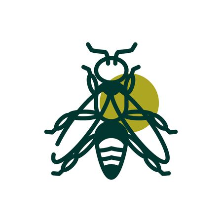 Wasp half line half color style icon design, Biodiversity life natural nature and adorable theme Vector illustration