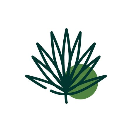 Isolated natural leaf half line half color style icon design of Floral nature plant garden ornament botany decoration and life theme Vector illustration 向量圖像