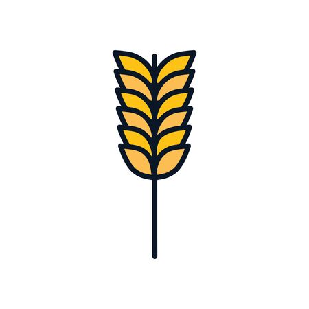 wheat ear line fill style icon design, agronomy farm lifestyle agriculture harvest rural farming and country theme Vector illustration