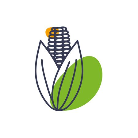 Corn line color style icon design, Food vegetable agriculture green plant maize cob and organic theme Vector illustration