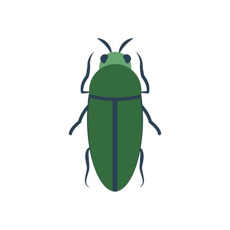 bug insect icon over white background, flat style, vector illustration