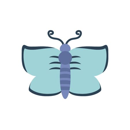 butterfly insect icon over white background, flat style, vector illustration