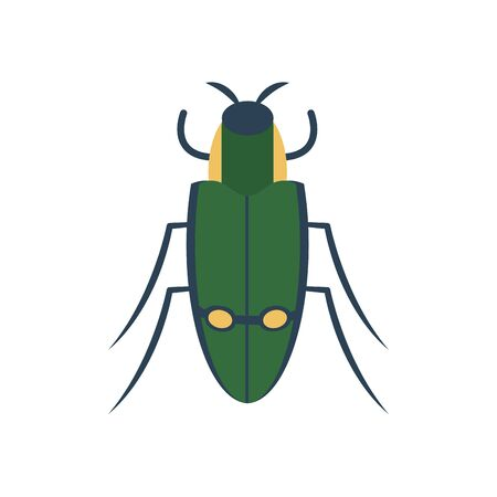 carab beetle icon over white background, flat style, vector illustration