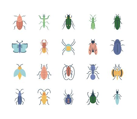 praying mantis and insect icon set over white background, flat style, vector illustration Vettoriali