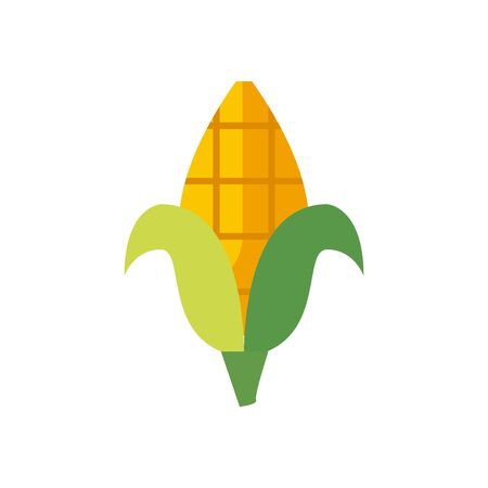 Corn fill style icon design, Food vegetable agriculture green plant maize cob and organic theme Vector illustration