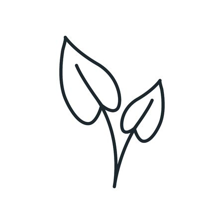 natural leaves line style icon design of Floral nature plant garden ornament botany decoration and life theme Vector illustration