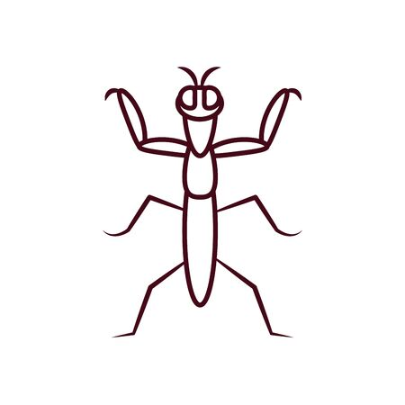 praying mantis insect icon over white background, line style, vector illustration