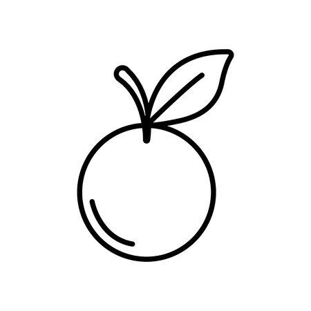 orange fruit icon over white background, line style, vector illustration