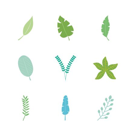 icon set of tropical leaves and exoctic leaves over white background, flat style, vector illustration Vettoriali
