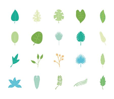 icon set of tropical leaves and fan palm leaf over white background, flat style, vector illustration Vettoriali