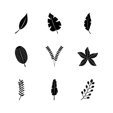 icon set of tropical leaves and exoctic leaves over white background, silhouette style, vector illustration Vettoriali